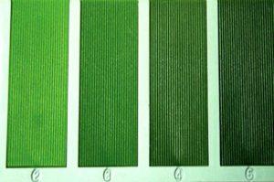 Leaf Colour Chart 1 (L. C. C.) - Banabethi