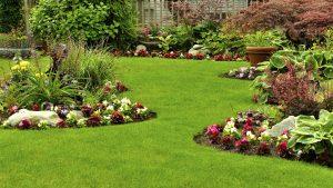 landscaping - Banabethi